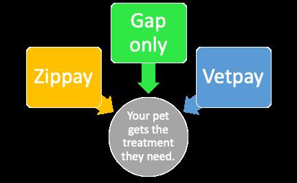 vet finance options